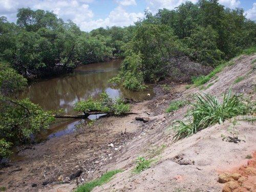 Agressão ao manguezal de Maracaípe